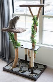 Cat Condos Cheap Make A Cat Tree Using Real Branches See How I Made This Beauty