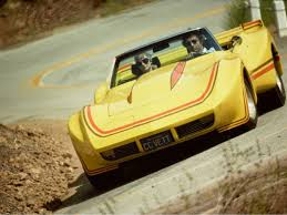 1976 corvette yellow 1976 yellow corvette
