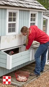 Best Chicken Coop Design Backyard Chickens by Best 25 Chicken Coop On Wheels Ideas On Pinterest