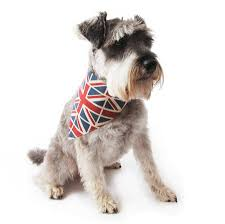 union jack linen dog neckerchief by mutts u0026 hounds