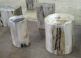 petrified wood end table the best 100 amazing ideas petrified wood table image collections