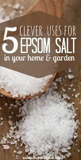 epsom salt vs table salt 16 alternative uses for epsom salt one crazy mom
