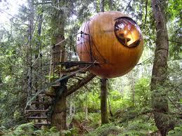 cool tree house astonishing treehouses amazing and tree homes
