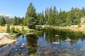 why tioga road yosemite national park is america u0027s best drive