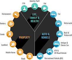 life family health property and auto
