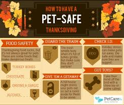 5 steps to a pet safe thanksgiving infographic by petcare rx