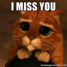Miss You Meme - simple i miss you meme funny i miss you meme images image memes at