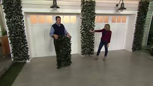 compass home set of 2 expandable faux ivy privacy fences on qvc