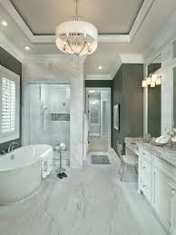 Tray Ceiling Painting Ideas Tray Ceiling Design Ideas Houzz