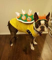 King Koopa Halloween Costume 25 Super Mario Costumes Ideas Super