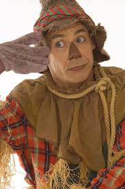 wizard of oz cowardly lion costume 8 best halloween images on pinterest