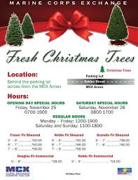 fresh christmas trees go on sale u2013 marine corps community services