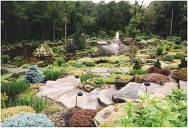 Small Rock Garden Pictures by Backyards Mesmerizing 1000 Images About Rock Gardens On