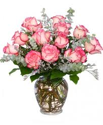 flowers to go a dazzling dozen bi colored roses in colorado springs co