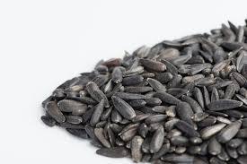 sunflower black oilseed mumm u0027s sprouting seeds