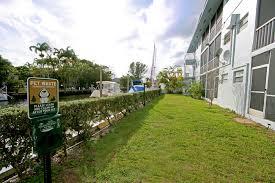 Dog In The Backyard by Marine Plaza Rentals Miami Fl Apartments Com