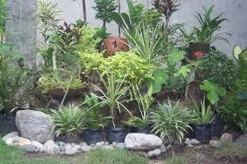 japanese backyard landscaping ideas sustainablepals org