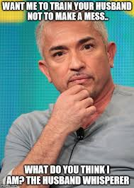 Meme Caption Maker - confused cesar millan meme generator imgflip
