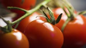 alimenti prostata gli alimenti fanno bene alla prostata paginemediche
