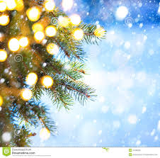 tree branch and snow fall stock image image 47589255