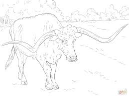 realistic texas longhorn coloring page free printable coloring pages