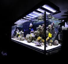 led reef aquarium lighting panorama led aquarium light fixture over reef aquarium led