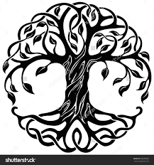 celtic tree of stock photos images pictures