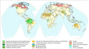 World Map Biomes by The Human Footprint Feature Articles