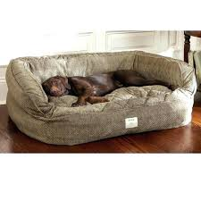 pillow top dog bed serta pillow top dog beds full image for extra large orthopedic dog