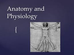 Anatomy And Physiology Chemistry Quiz Anatomy And Physiology Root Words Find Definition Study For Quiz
