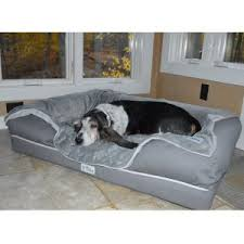 Comfort Pet Certification Petfusion Ultimate Pet Bed U0026 Lounge In Premium Edition With Solid