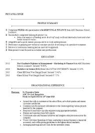 Sample Summary In Resume by Over 10000 Cv And Resume Samples With Free Download Mba Marketing