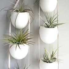 indoor garden planter u2013 swebdesign