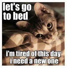 So Tired Meme - new day catz pinterest cat animal and kitty