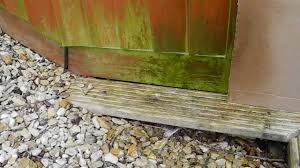 Moss Cleaner For Patios Anti Moss Green Algae Removal And Woodworm Killer From Decking