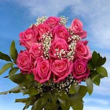 Global Roses Mother U0027s Day Special 6 Dozen Roses Best Price 72 Roses U0026 Fillers 3
