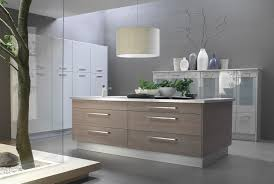 Rta Kitchen Cabinets Chicago by European Kitchen Cabinets