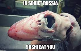 Sushi Meme - image tagged in deep sea creature imgflip