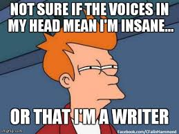 Writer Memes - 10 great writing memes pen possessed