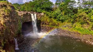 Hawaii wildlife tours images Big island nature wildlife tours discover natural hawaii jpg
