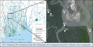 map of be map of the sundarbans left and location of the study points in