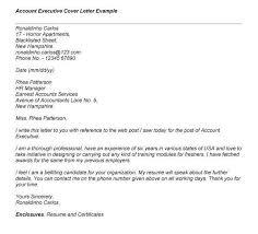 associate media director cover letter top 8 media director resume