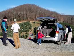 wccta boone north carolina choose and cut christmas trees farms