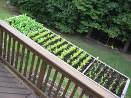 Deck Garden Ideas Patio Vegetable Planters Inspirational Of Cool Container Ve Able