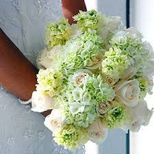 Planning Your Own Wedding Grow Your Own Wedding Flowers