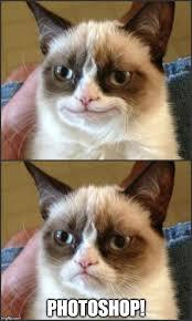 Grumpy Cat Meme Creator - grumpy cat meme maker cat best of the funny meme