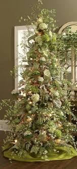 22 magical trees magical bern and