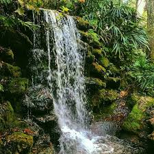 Florida waterfalls images 27 beautiful springs and waterfalls within driving distance of orlando jpeg