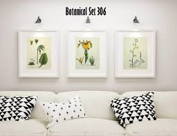 3 vintage floral prints matted and framed yellow floral prints