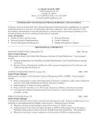 resume sample program manager resume
